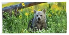Beach Towel featuring the photograph Grizzly Cub Snow In The Flowers by Yeates Photography