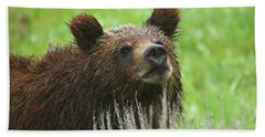 Beach Towel featuring the photograph Grizzly Cub by Steve Stuller