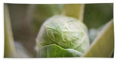 Grumpy Brussel Sprout Beach Sheet by Robert FERD Frank