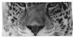 Grumpy Tiger  Beach Sheet