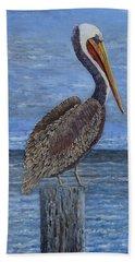 Gulf Coast Brown Pelican Beach Sheet
