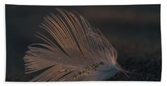 Gull Feather On A Beach Beach Towel