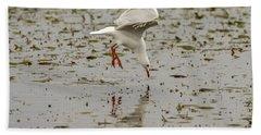 Gull Fishing 01 Beach Towel