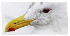 Beach Towel featuring the photograph Gull Portrait by Sue Harper