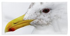 Gull Portrait Beach Sheet