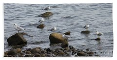 Gulls Resting Beach Towel