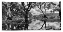 Beach Towel featuring the photograph Gum Creek by Douglas Barnard