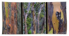 Gum Trees At Lake St Clair Beach Towel by Werner Padarin