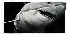 Gw Shark Beach Towel