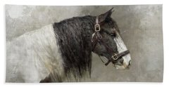 Gypsy Vanner Beach Sheet by Kathy Russell