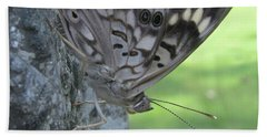 Hackberry Emperor Butterfly Beach Sheet by Donna Brown