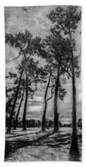 Hagley Park Treescape Beach Towel