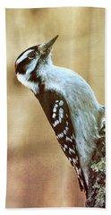 Hairy Woodpecker Beach Towel
