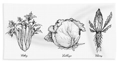 Hand Drawn Of Celery, Cabbage And Chicory Beach Towel