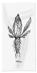 Hand Drawn Of Chicory Isolated On White Background Beach Towel