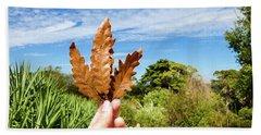 Hand Holding A Beautiful Oak Leaf Beach Sheet