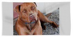 Handsome Red Nose Pit Jak Beach Sheet