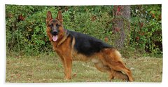 Beach Towel featuring the photograph Handsome Rocco by Sandy Keeton