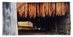Beach Towel featuring the photograph Hanging Tobacco by James Kirkikis