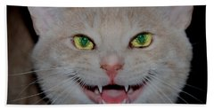 Happy For Spring Cat Beach Towel