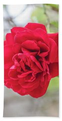 Beach Towel featuring the photograph Happy Red Flower by Raphael Lopez