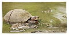 Happy Turtle Beach Sheet