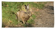 Hare In The Woods Beach Towel