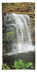 Harrison Wright - Ricketts Glen Beach Towel