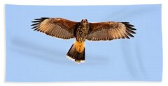 Beach Towel featuring the photograph Harris's Hawk H36 by Mark Myhaver