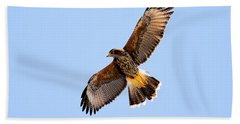 Beach Towel featuring the photograph Harris's Hawk H37 by Mark Myhaver