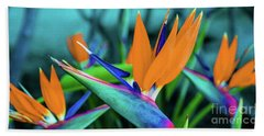 Hawaii Bird Of Paradise Flowers Beach Sheet