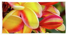 Beach Towel featuring the photograph Hawaii Plumeria Flowers In Bloom by D Davila