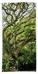 Hawaii Tree-bard Beach Towel
