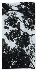 Hawaiian Hawk Silhouette  Beach Sheet