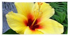 Hawaiian Hibiscus Beach Sheet