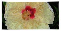Hawaiian Hybiscus Beach Sheet