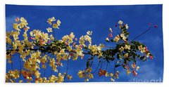 Beach Towel featuring the photograph Hawaii's Rainbow Shower Tree by Craig Wood