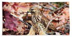 Hawk Catches Prey Beach Sheet