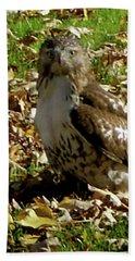 Hawk Falling Leaves Beach Towel
