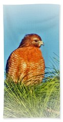 Hawk High Beach Towel