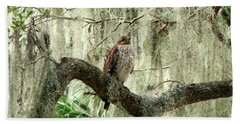 Hawk In Live Oak Hammock Beach Towel