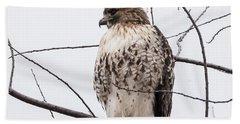 Hawk On Alert Beach Sheet