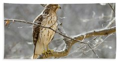 Beach Sheet featuring the photograph Hawk On Lookout by George Randy Bass