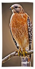 Hawk  Beach Towel