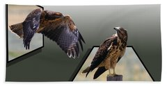 Beach Towel featuring the photograph Hawks by Shane Bechler