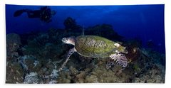 Hawksbill Turtle Swimming With Diver Beach Towel