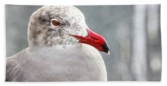 Beach Towel featuring the photograph Heerman's Gull by Randy Bayne