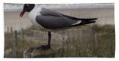 Hello Friend Seagull Beach Sheet