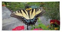 Hello Swallowtail  Beach Sheet