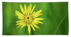 Beach Towel featuring the photograph Hello Wild Yellow by Bill Pevlor